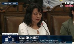 Dirigente de Aguas Andinas y del sector Servicios Sanitarios.